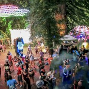 ACD-EnchantedForest2013-193-1-1024x576